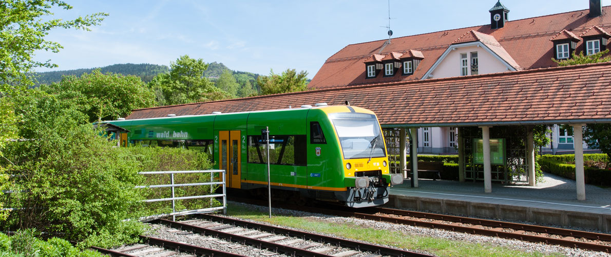 Waldbahn.jpg