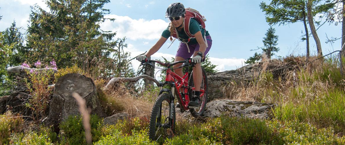 Mountainbike-4.jpg